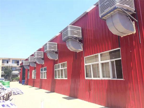 冷风机厂家3